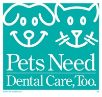 pets need dental care
